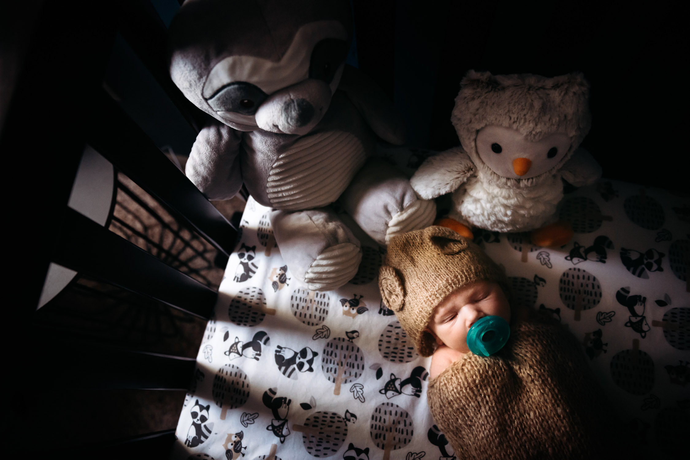 newborn in crib with stuffed raccoon and bird with pacifier in bear swaddle wrap